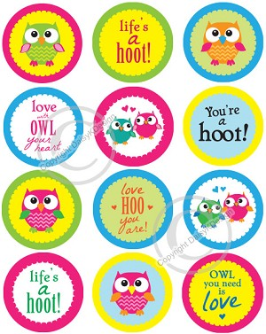 Bottle Cap Images -Colorful Owls and Owl Sayings